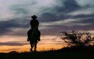 Cowboy at dawn